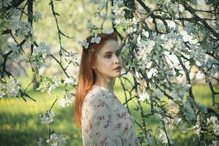 Аня в яблонях