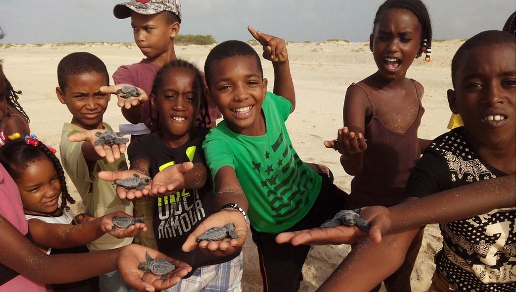 Children holding turtle hatchlings