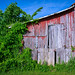 Rustic old barn on Leading Creek Road in Meigs County, Southeastern Ohio by diana_robinson