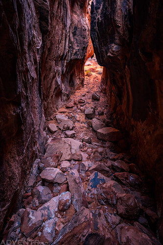 Narrow Path | by IntrepidXJ