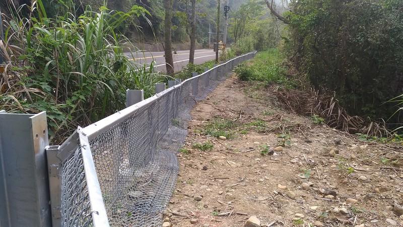 在路殺熱點防止動物過馬路的圍籬。特生中心提供