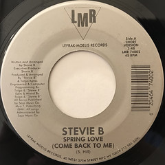 STEVIE B:SPRING LOVE(LABEL SIDE-A)
