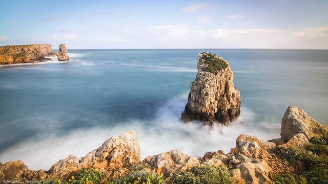 Portugal Nature  -  Papôa  -  N9504