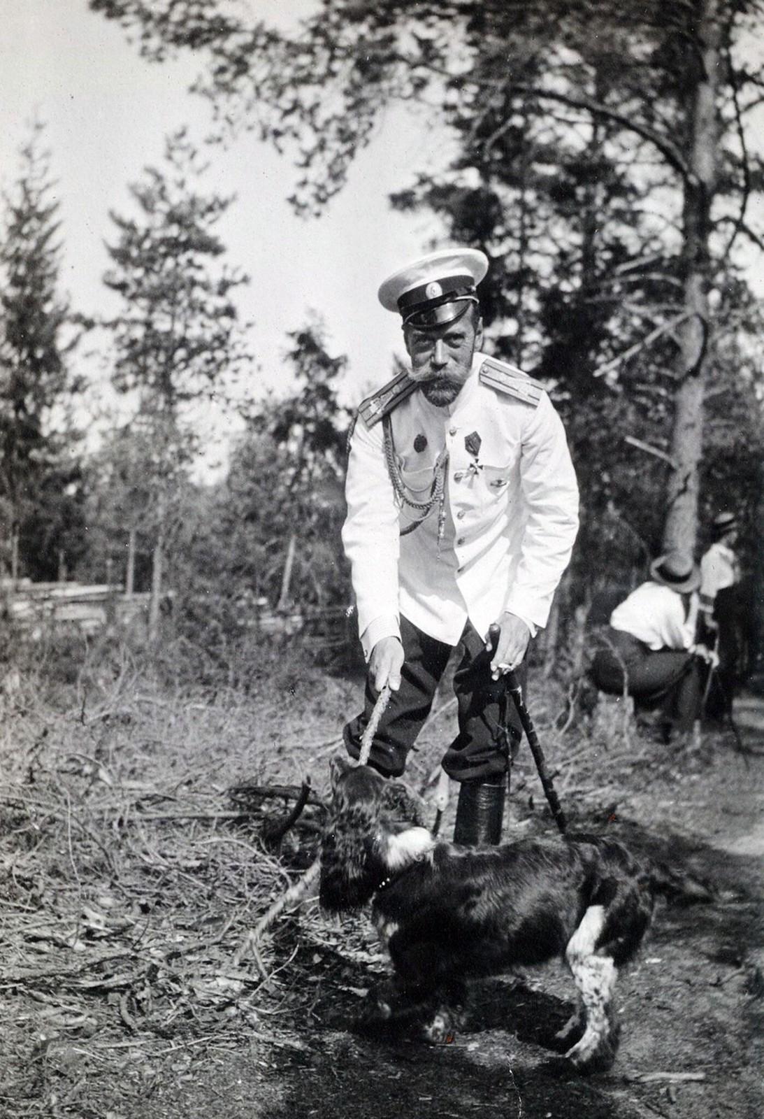 1913. Император Николай II со спаниелем Джоем.