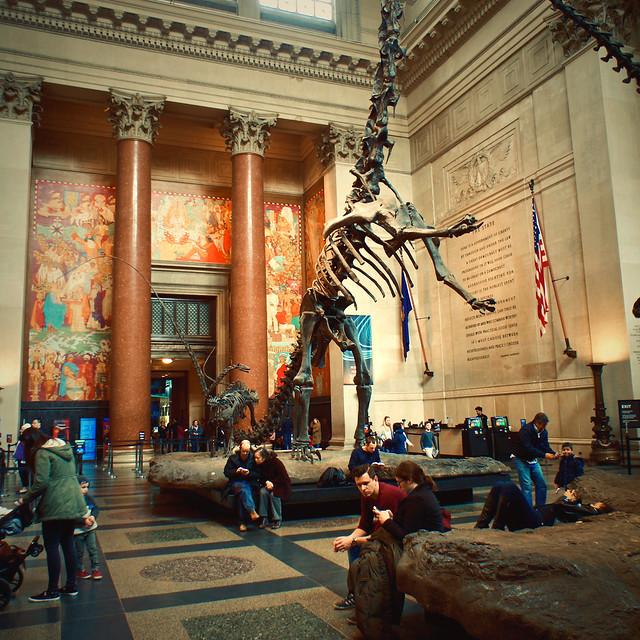 Museum Natural History