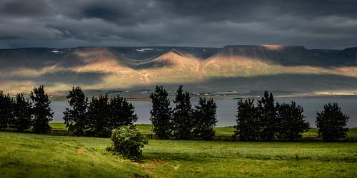 svalbarðsströnd norðurlandeystra island is landscape light effect sun morning clouds fjord eyjafjörður water trees meadow grass mountains greatphotographers 10000px