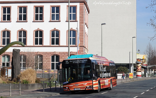 Bunte Buswelt - Frankfurt am Main