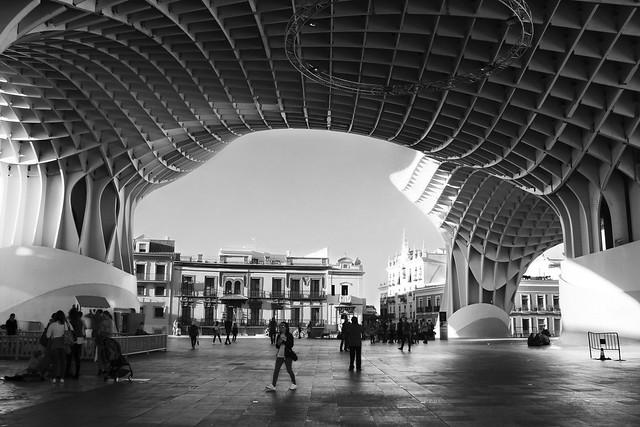 Setas de Sevilla
