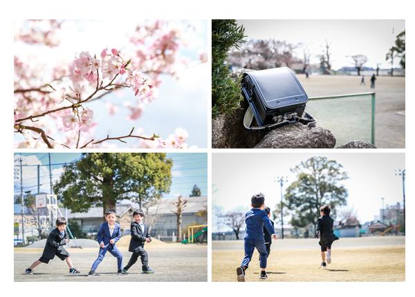 小学校入学記念 桜の季節 男の子 黒のランドセル