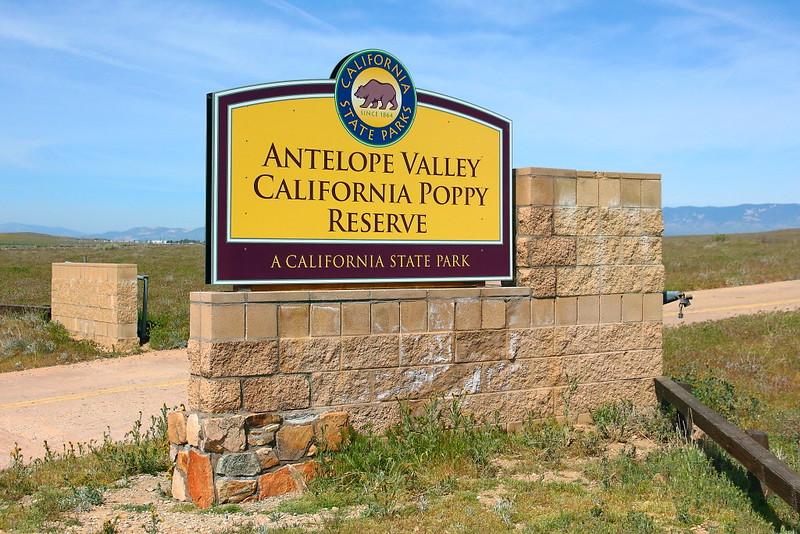 IMG_2000 Antelope Valley California Poppy Reserve