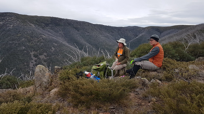 Morning tea time on the Grey Hills