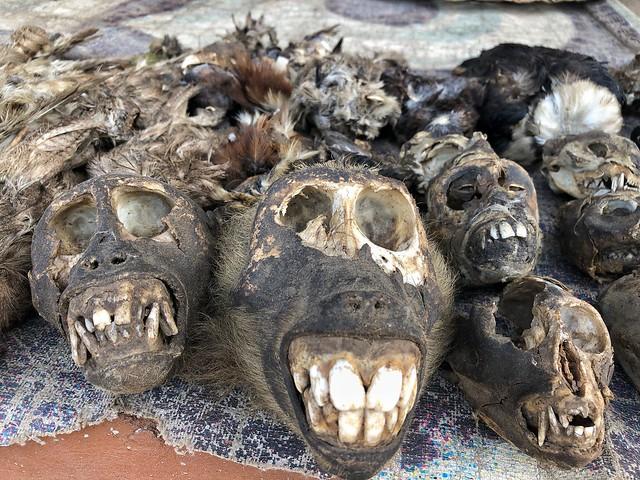 Mercado de fetiches de Lomé (Togo)
