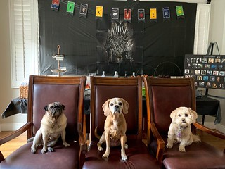 Game of Thrones Party | by The Culinary Chronicles