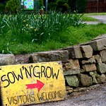 Sow 'N' Grow at Haslam Park, Preston