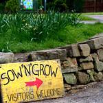 Sow 'N' Grow at Haslam Park, Preston