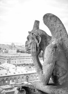 Gargoyle 5/29/09 #notredamecathedral #paris