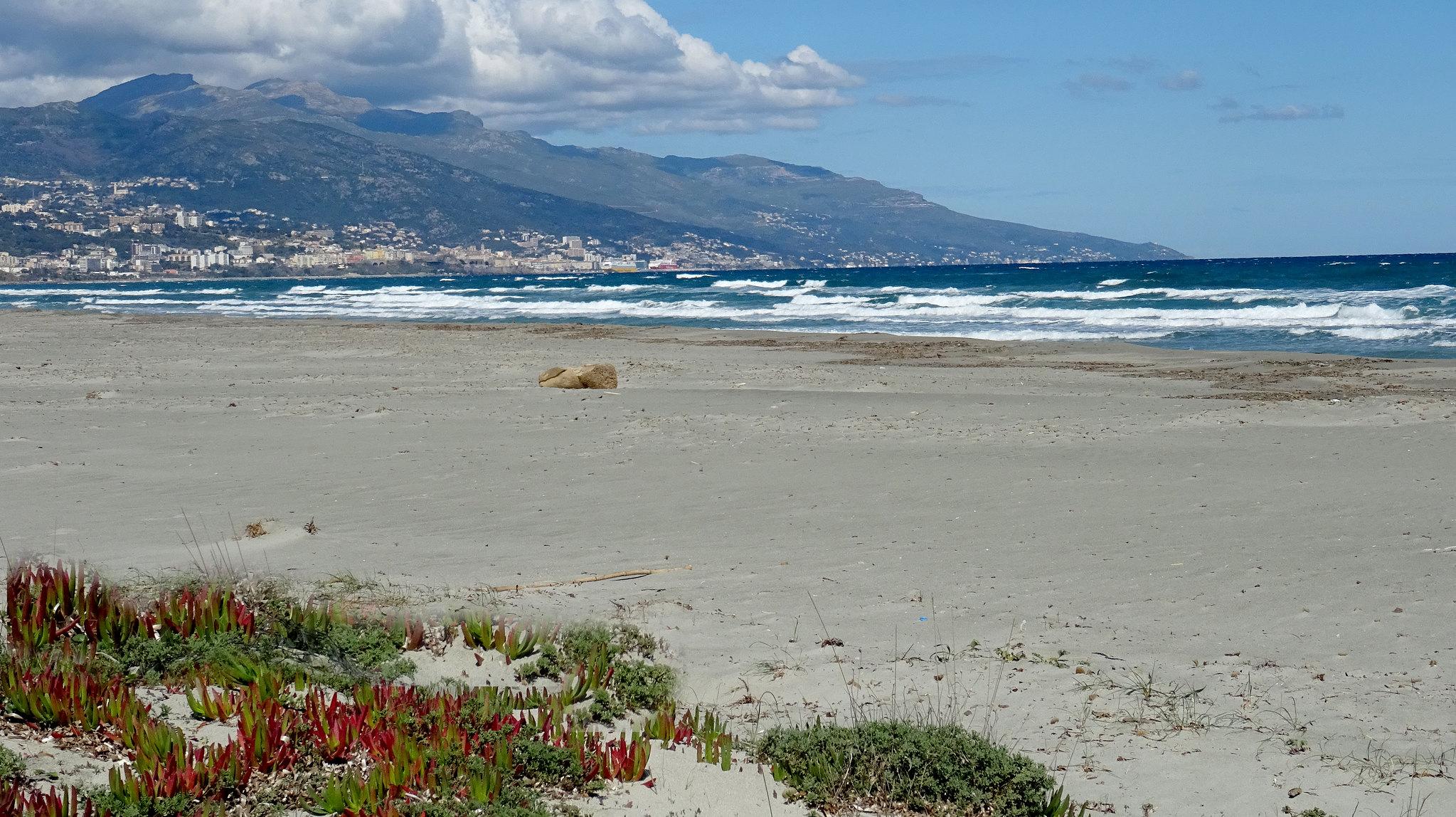 Plage de la Marana, vue sur Bastia