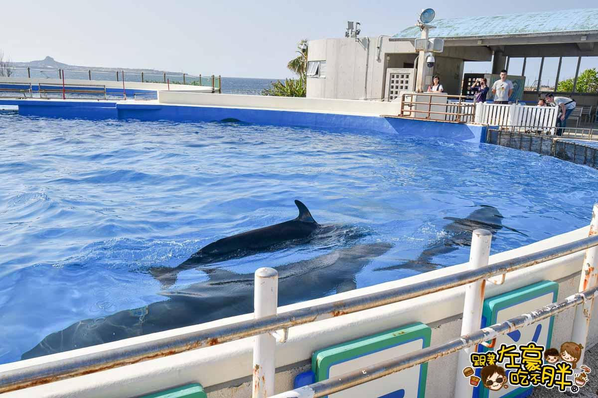 沖繩美麗海水族館-118