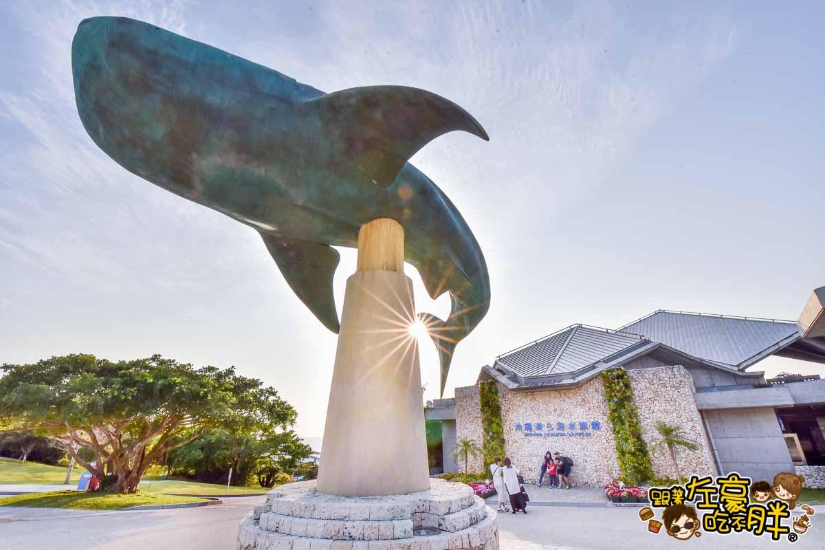 沖繩美麗海水族館-115