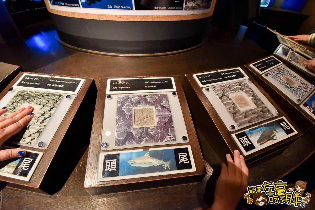 沖繩美麗海水族館-103