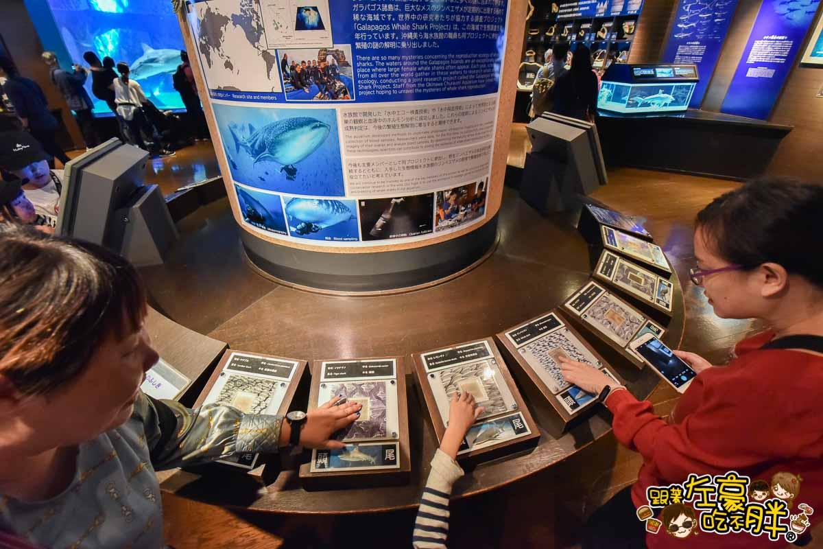 沖繩美麗海水族館-102