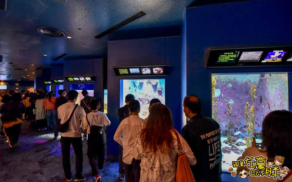 沖繩美麗海水族館-80