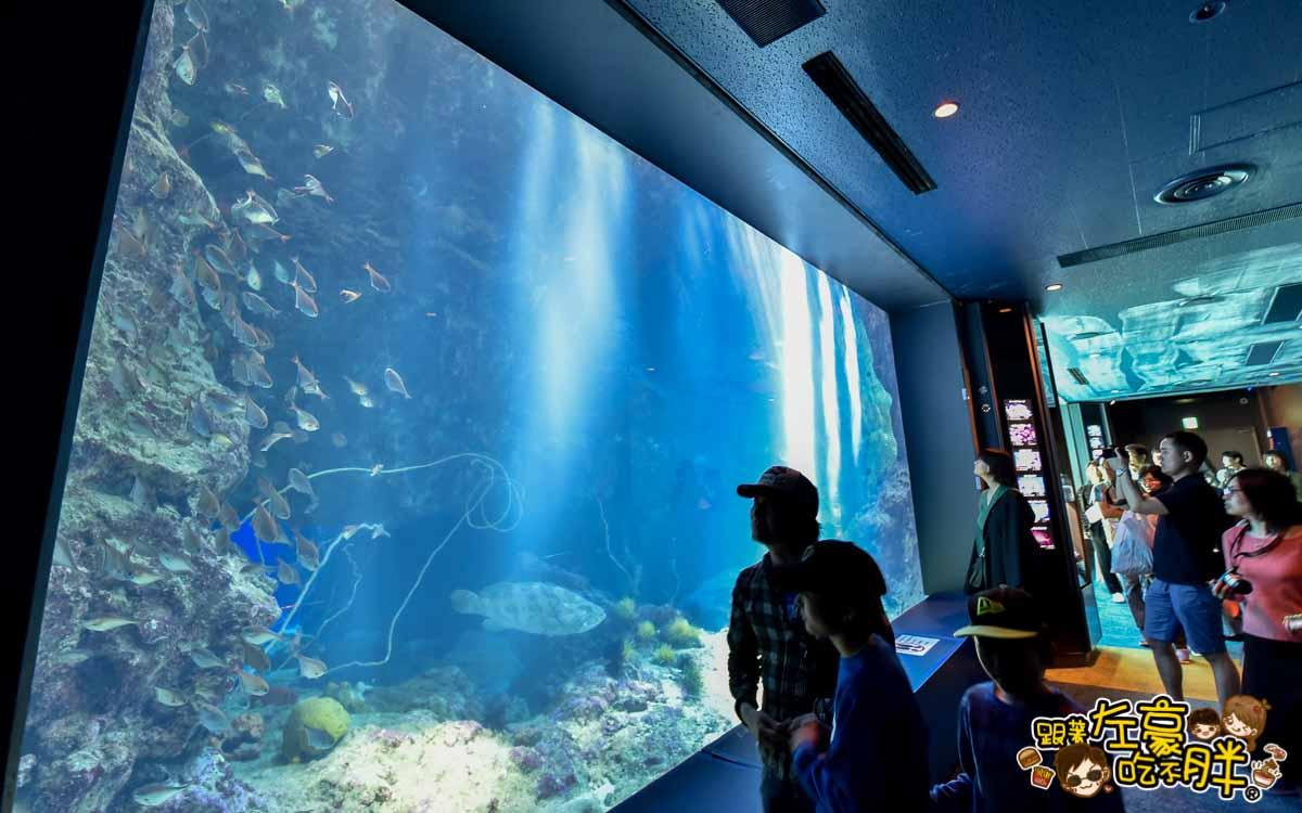 沖繩美麗海水族館-76