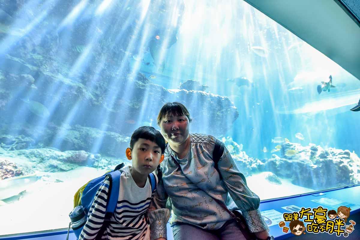 沖繩美麗海水族館-75