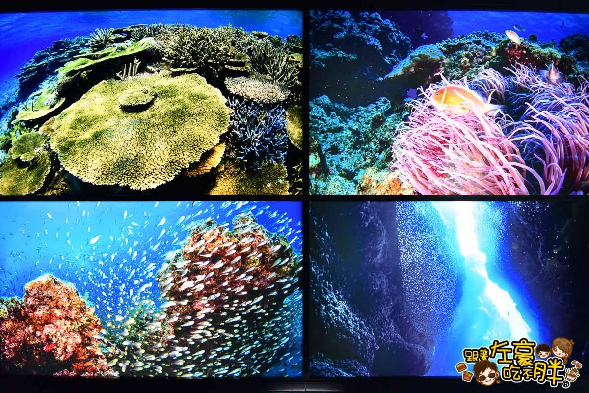 沖繩美麗海水族館-73