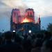 <p><a href=&quot;http://www.flickr.com/people/luc-marechaux/&quot;>Luc Maréchaux</a> posted a photo:</p>&#xA;&#xA;<p><a href=&quot;http://www.flickr.com/photos/luc-marechaux/47584436632/&quot; title=&quot;NOTRE DAME- LUC_5068&quot;><img src=&quot;https://live.staticflickr.com/65535/47584436632_d09cdc84bf_m.jpg&quot; width=&quot;240&quot; height=&quot;160&quot; alt=&quot;NOTRE DAME- LUC_5068&quot; /></a></p>&#xA;&#xA;<p>Notre-Dame de Paris</p>
