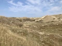 Egmond ann Zee Süd  Paragliding