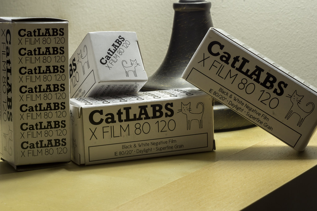 Film Review Blog No. 45 - CatLABS X Film 80