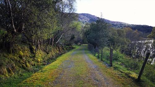 path fence glannroad slichonamara nature greenroad ireland connemara cogalway countryside rural open