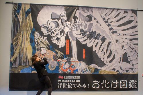 新潟県立歴史博物館 - 浮世絵でみる!お化け図鑑