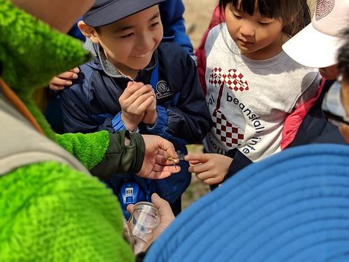 Spring School 2019: Toyota Trip