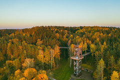 Treetop walking path | Lithuania