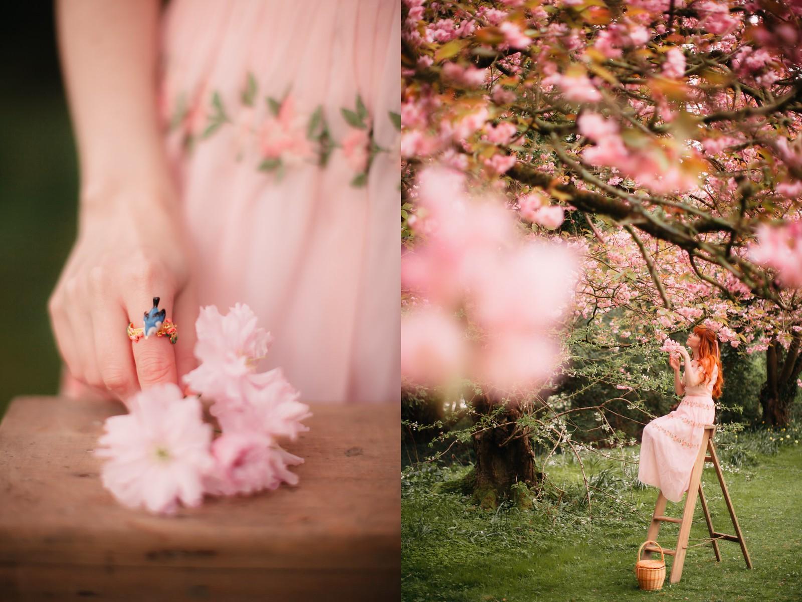 cherry blossom-5-side