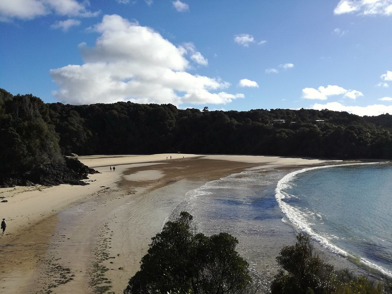Stewart Island things to do - sightseeing nature walks
