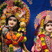 Darshan from IMG_0156