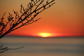 Loojang / Sunset