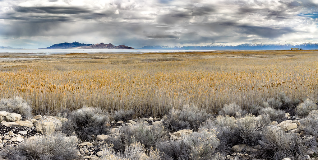 Antelope Island, Great Salt Lake, Utah, USA