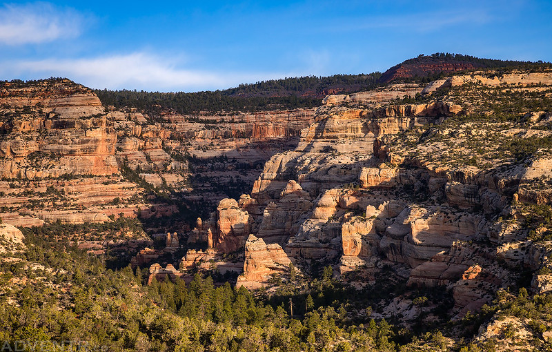 Morning Canyon View