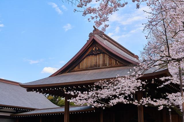靖國神社 / Yasukuni Shrine
