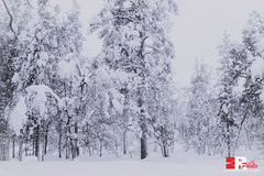 somewhere out in Lapland