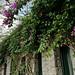 Giardini Poseidon Terme, Italia