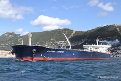 Ship. Vladimir Tikhonov 9311622