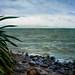 Sea of Galilee-
