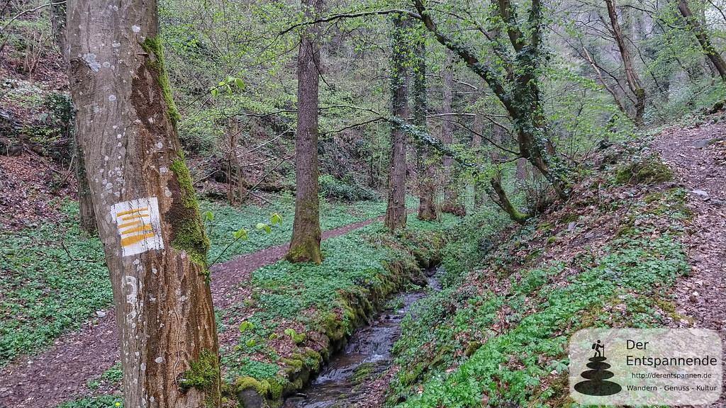 Naturschutzgebiet Dortebachtal