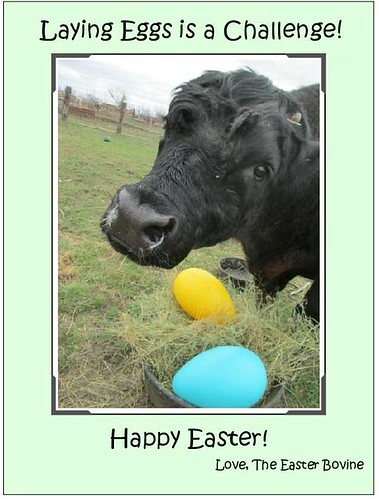 2019 Easter Bovine | by jobiebat