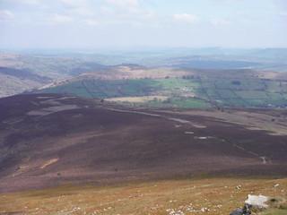Descent Route down Mynydd Llanwenarth with Usk Valley beyond SWC Walk 334 - Sugar Loaf (Abergavenny Circular)